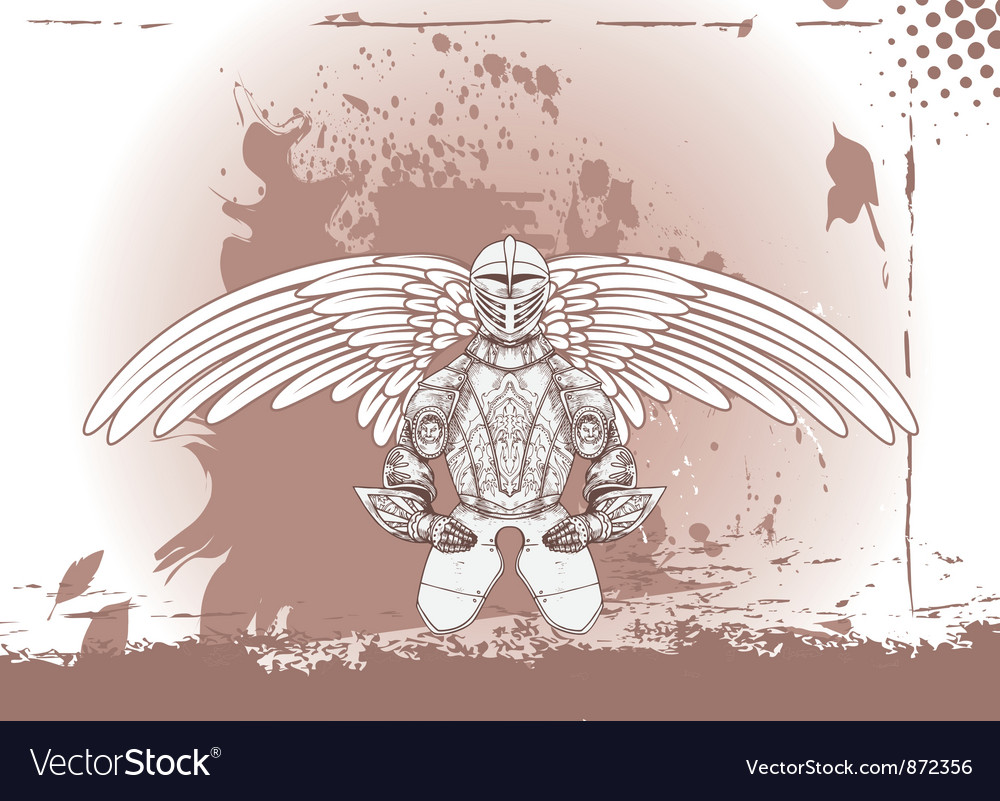 Wings with armor vector