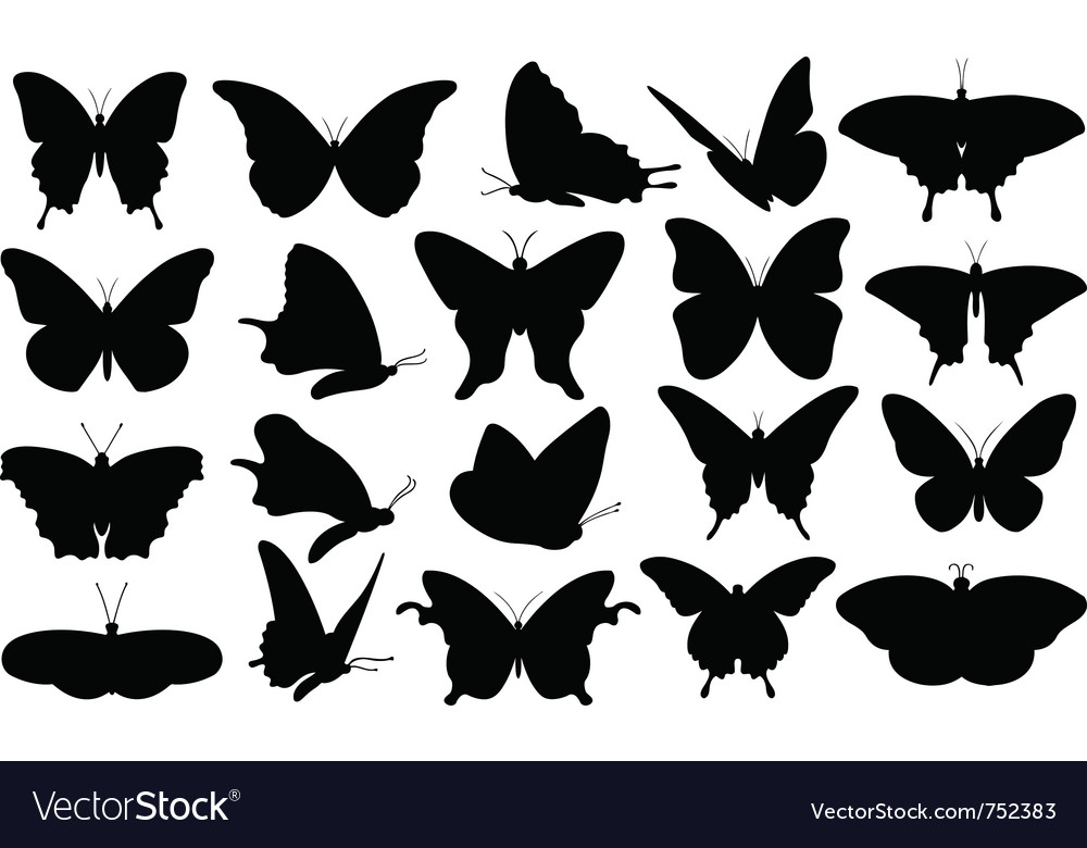 Butterfly collage vector