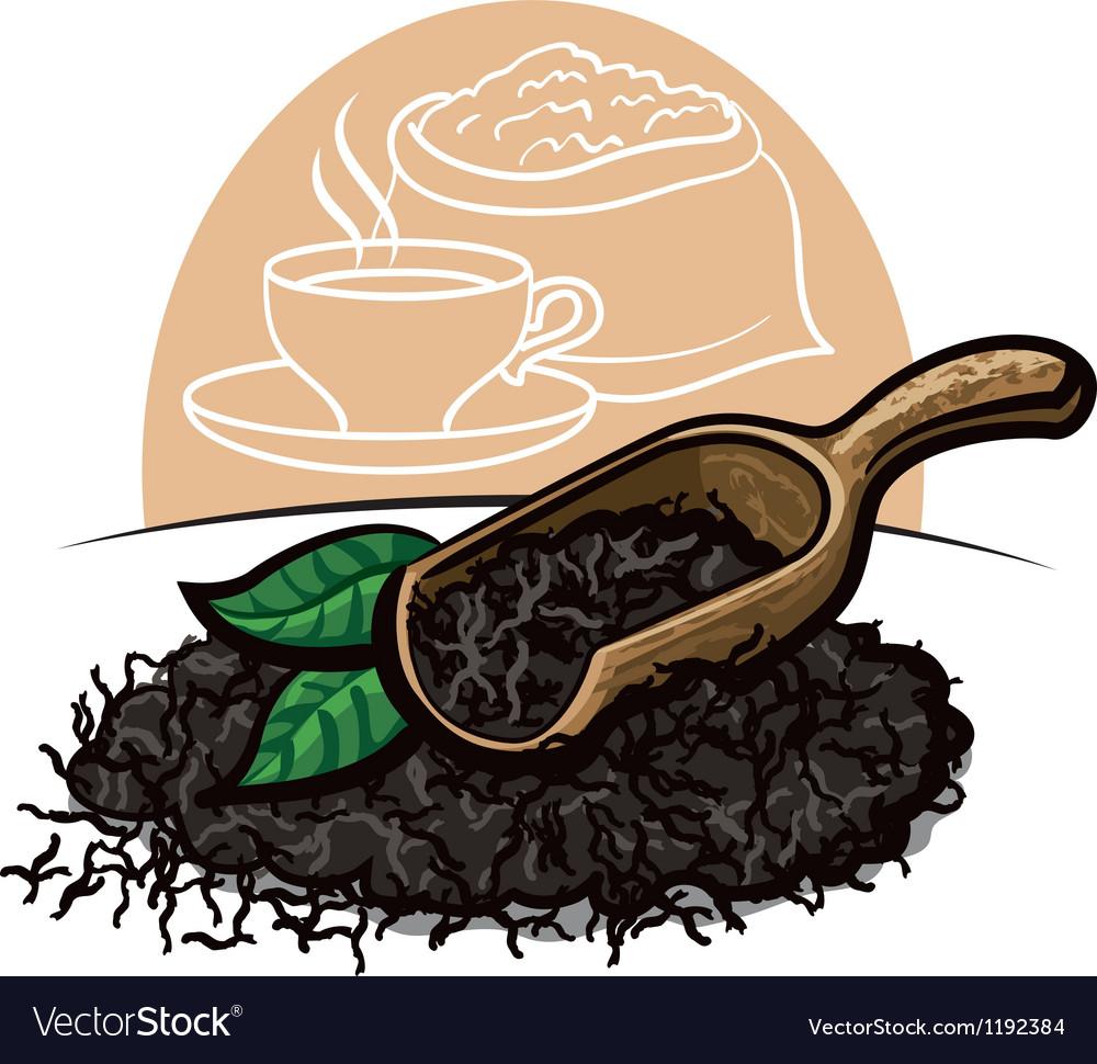 Dry black tea leaves vector