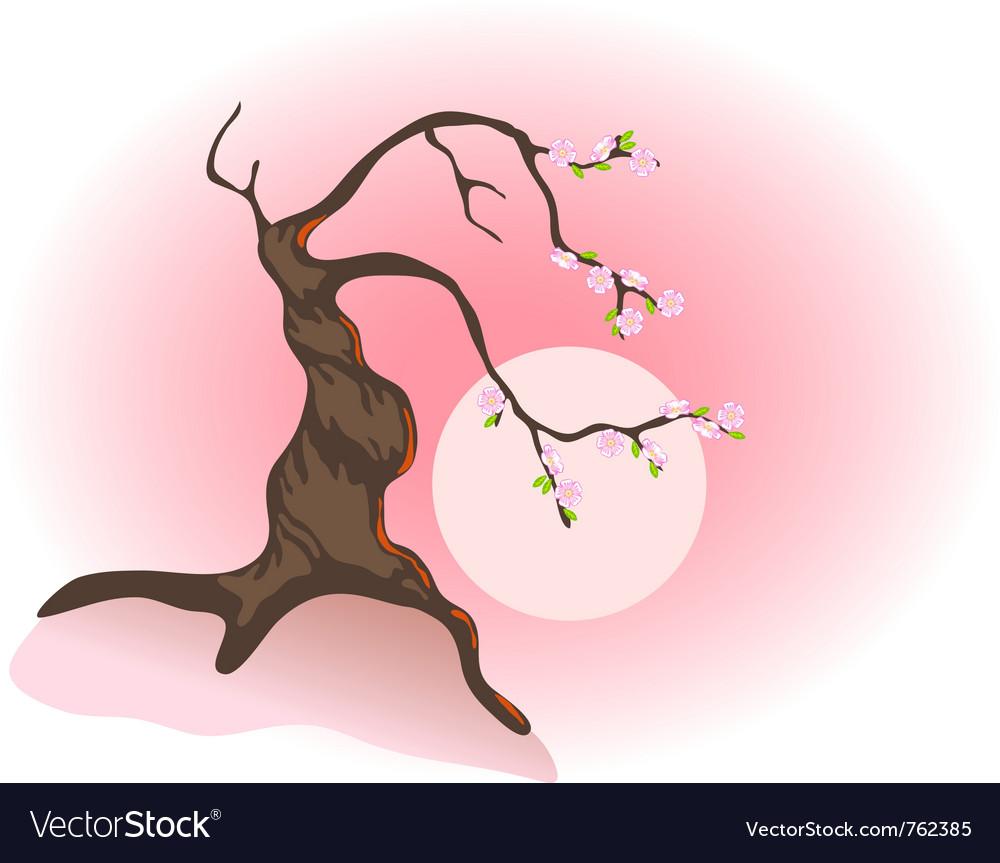 Flowering bonsai vector