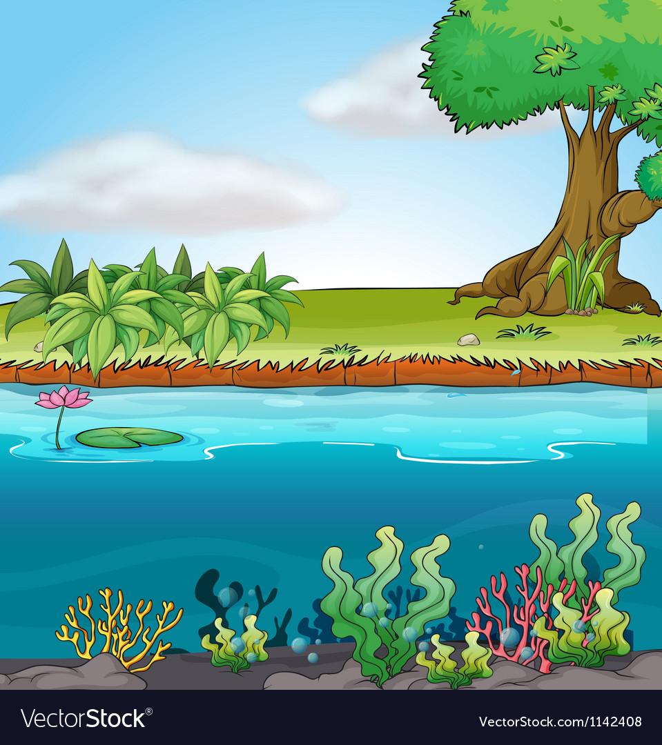 Land and aquatic environment vector
