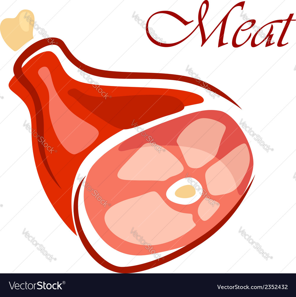 Fresh raw meat vector