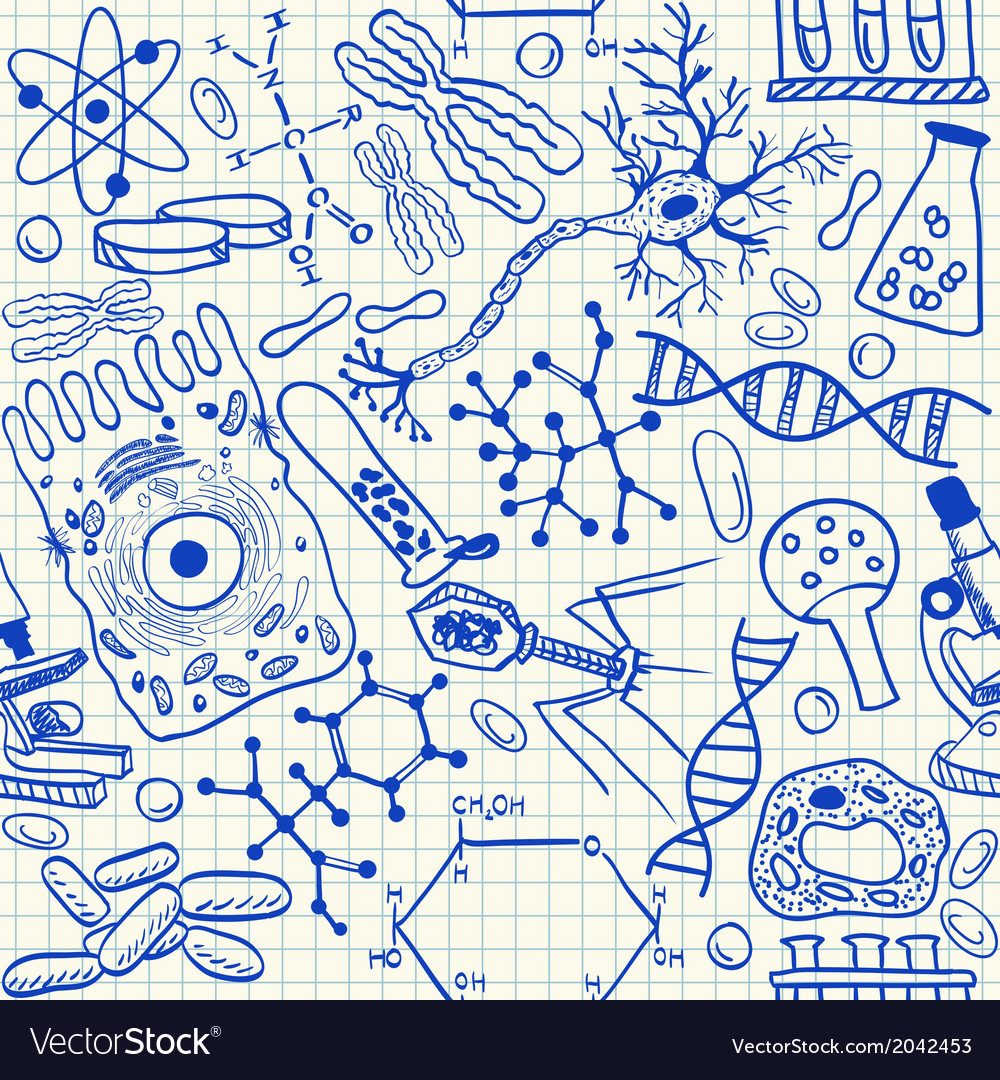 Biology doodles on school squared paper vector