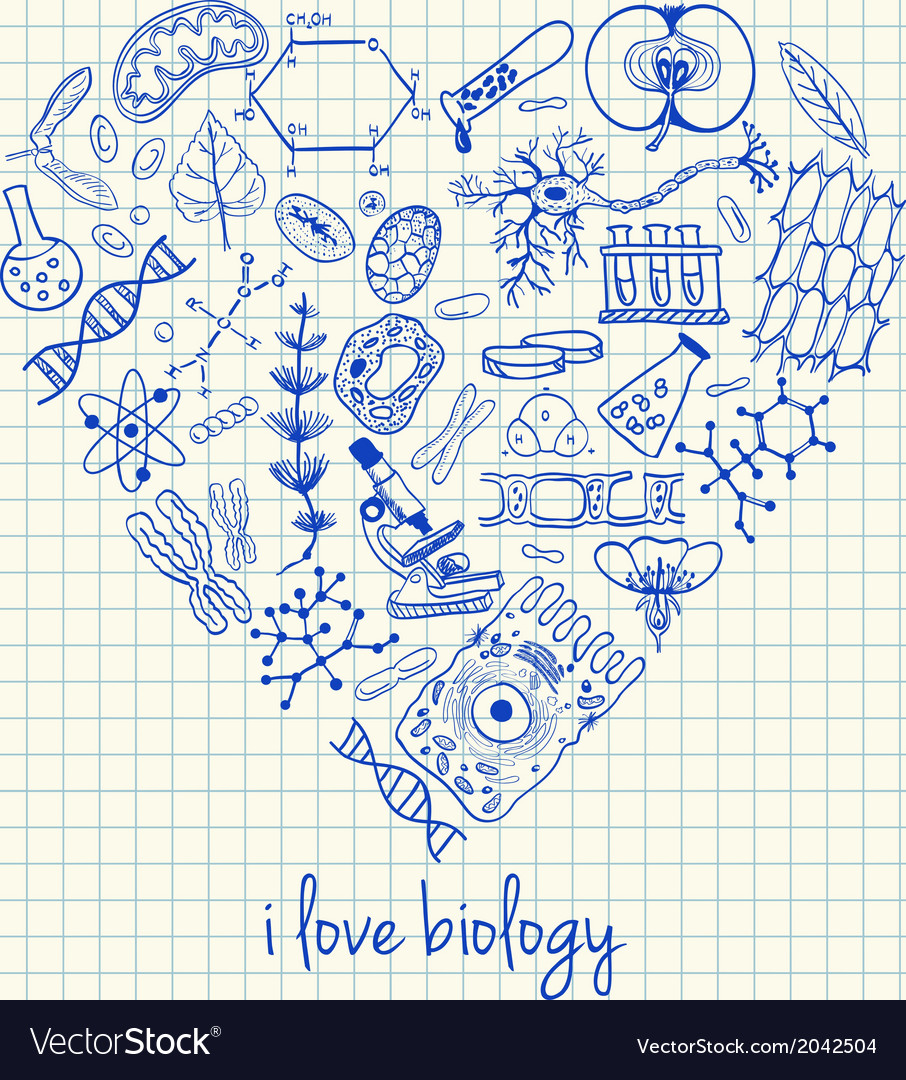 I love biology doodles in heart vector