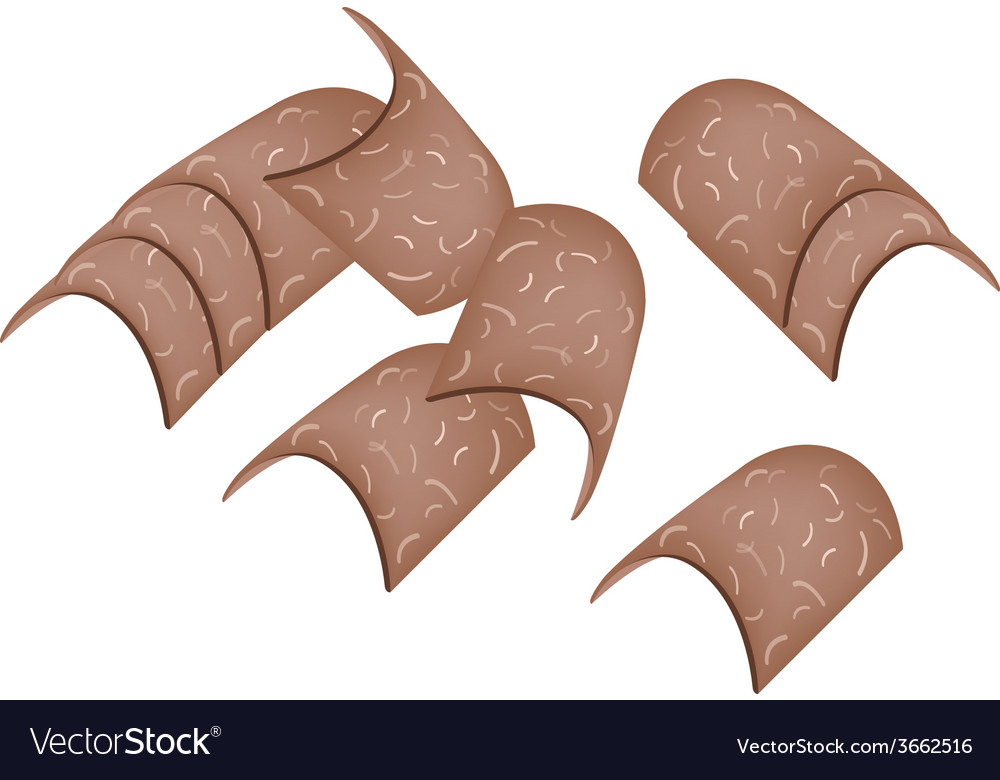 Japanese traditional sweet of baked yatsuhashi vector