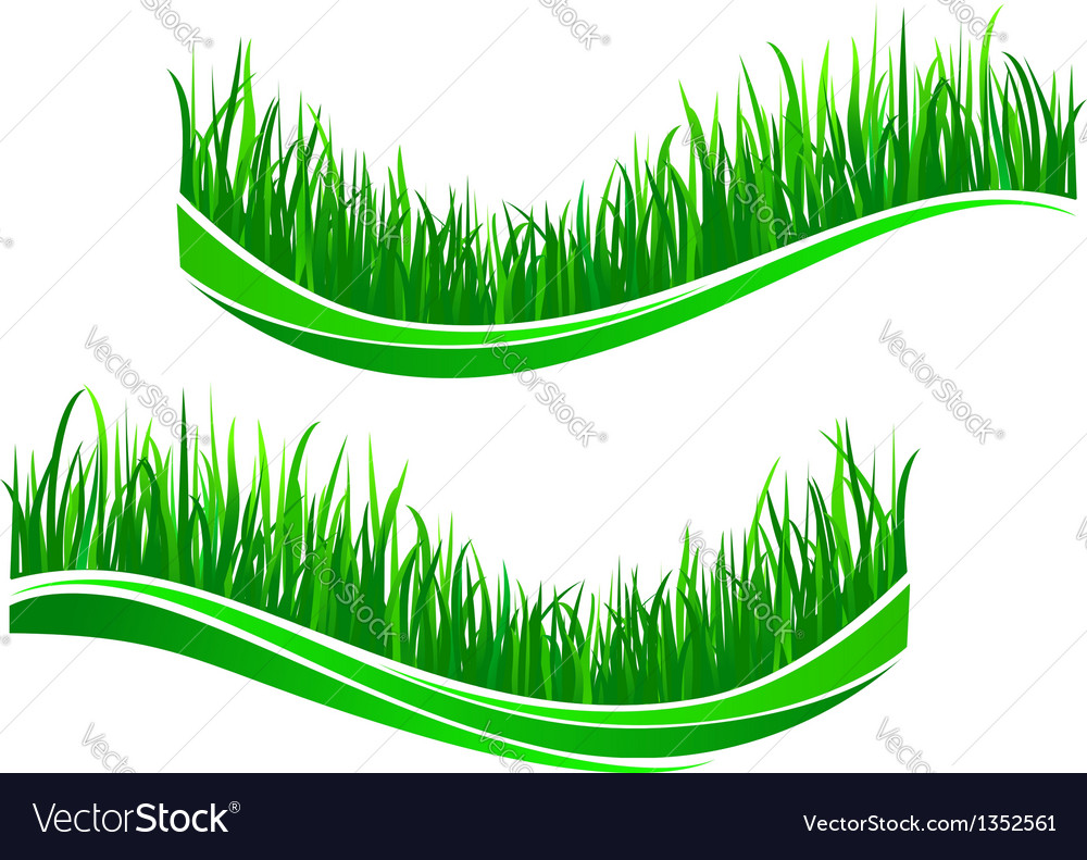 Green grass waves vector