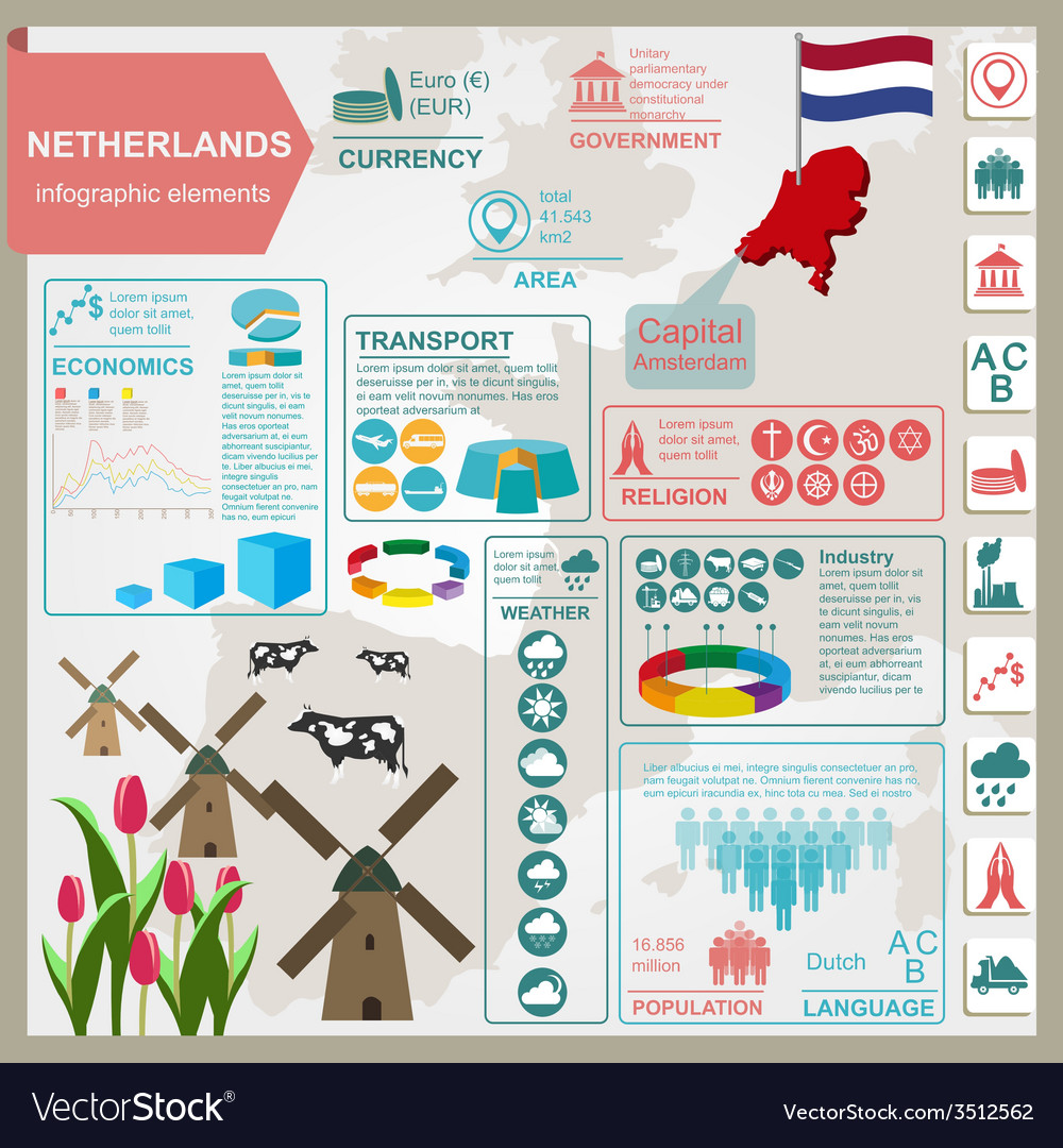 Netherlands infographics statistical data sights vector