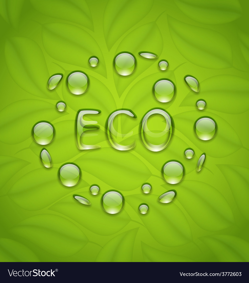 Eco friendly background with water drops on fresh vector