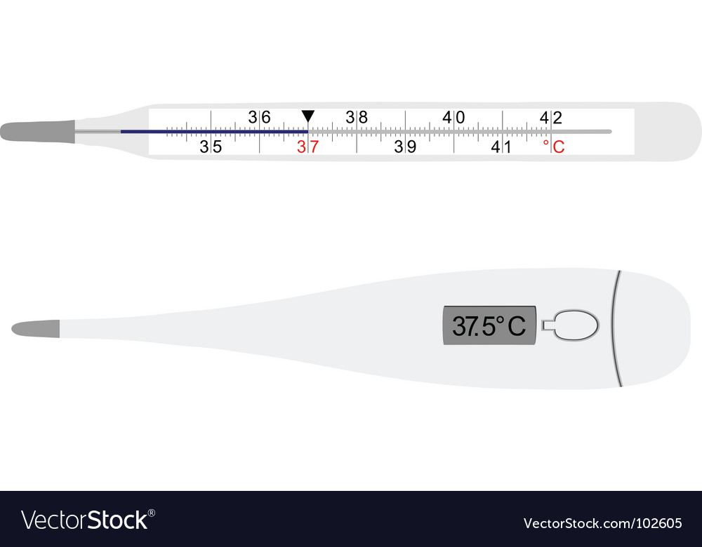Analog and digital thermometers vector