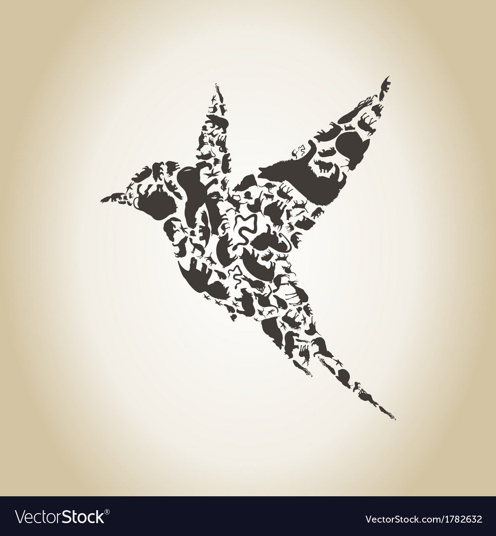 Bird an animal vector