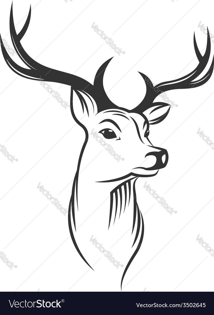 Deer head on white background vector