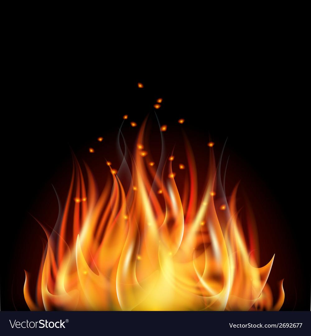 Fire on dark background vector