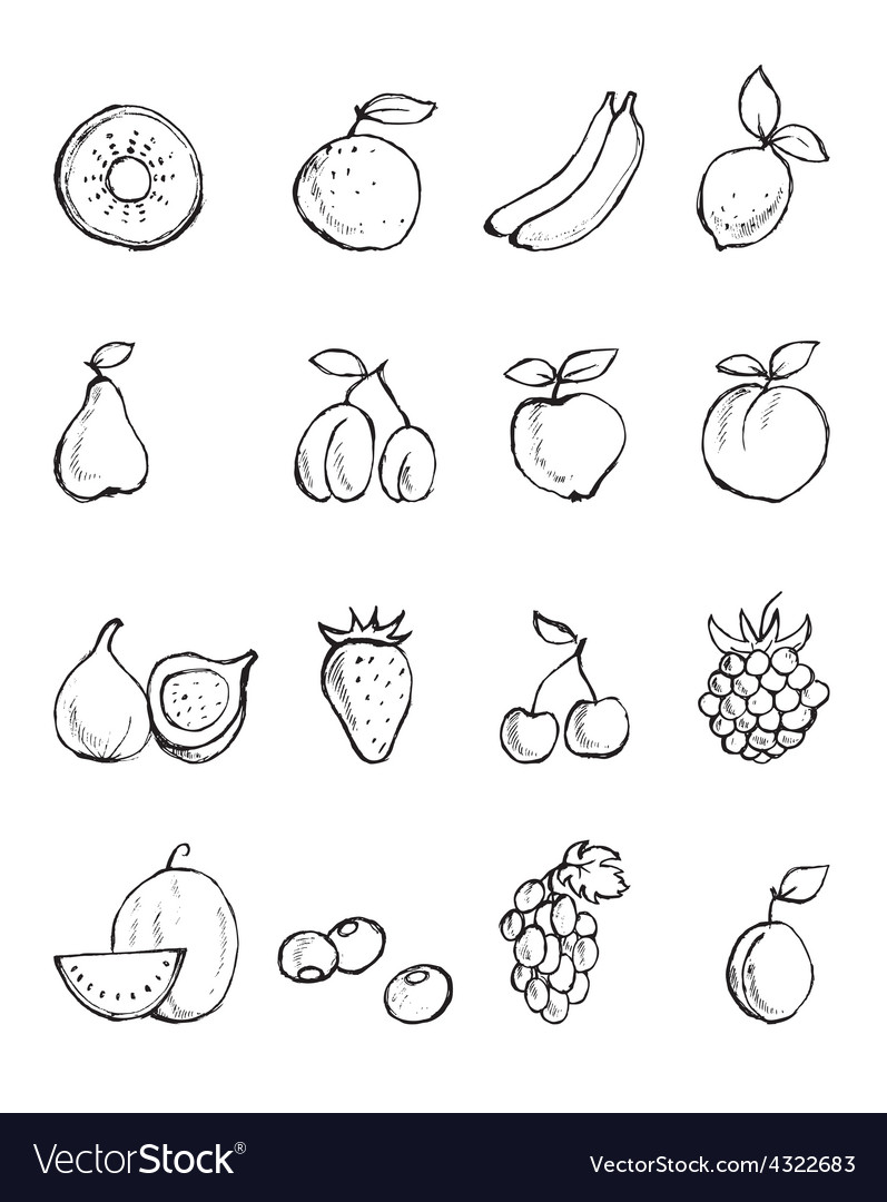 Hand- painted fruit icons vector