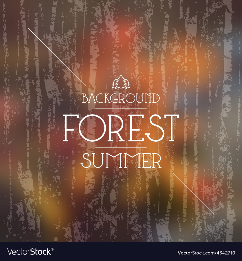 Summer forest background warm colors vector