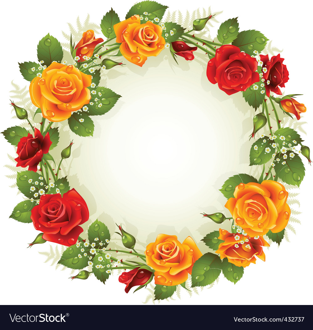 red and yellow rose vector