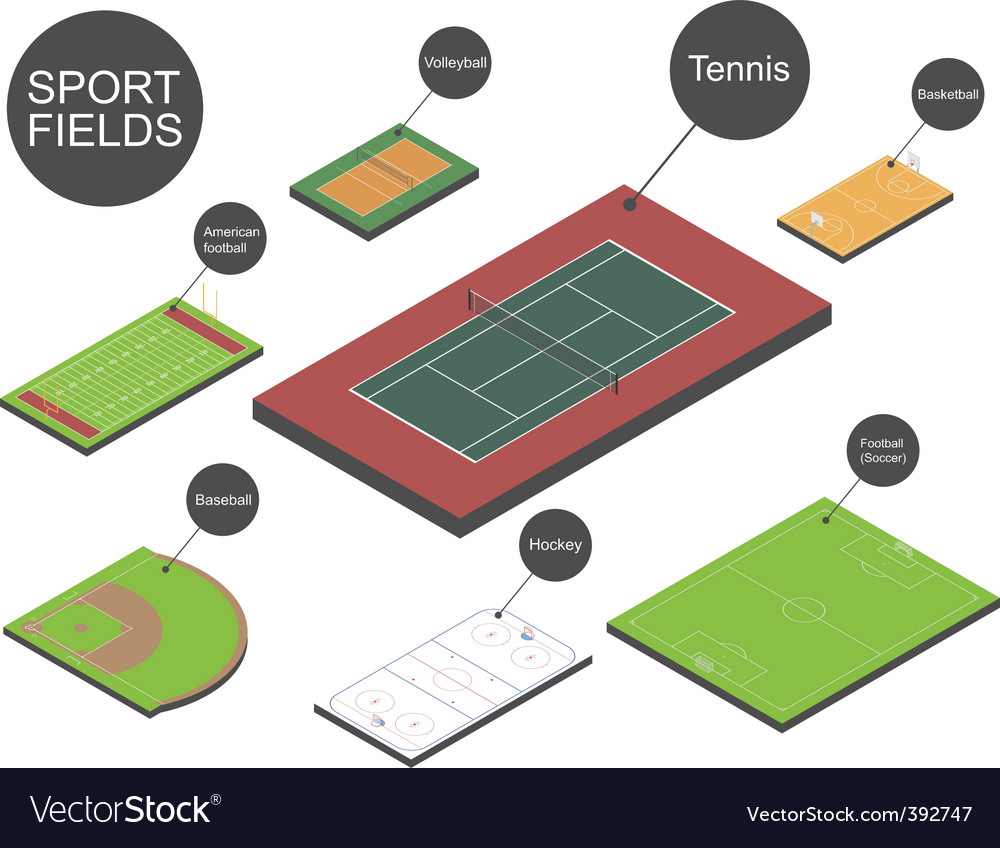 Sport fields vector