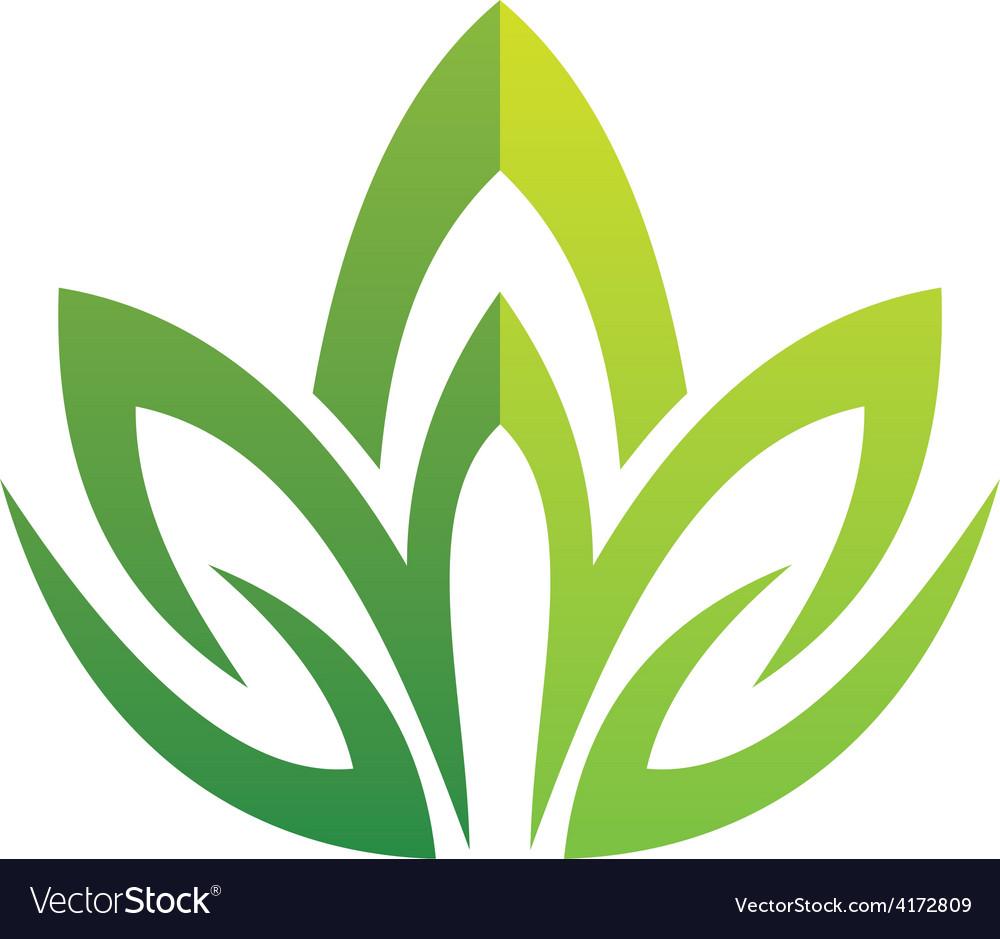 Lotus green swirl logo vector