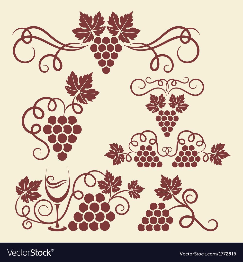 Grape vine elements vector