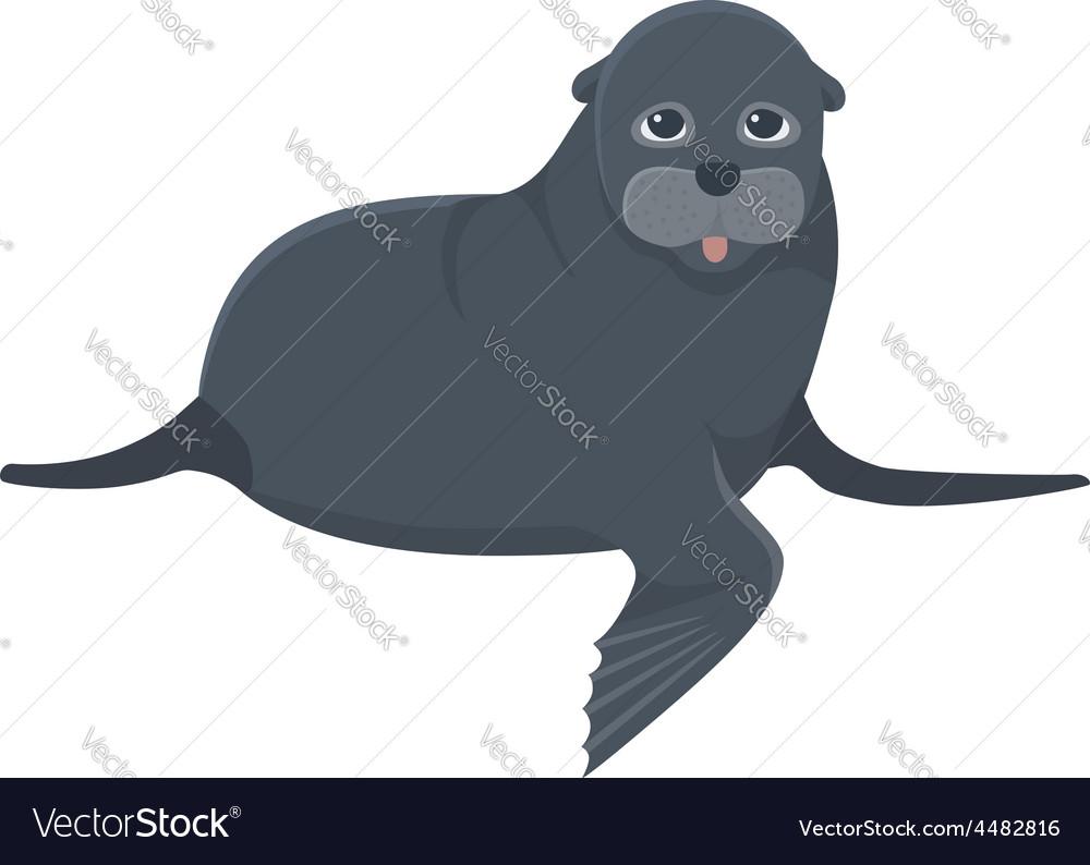 Sea calf vector