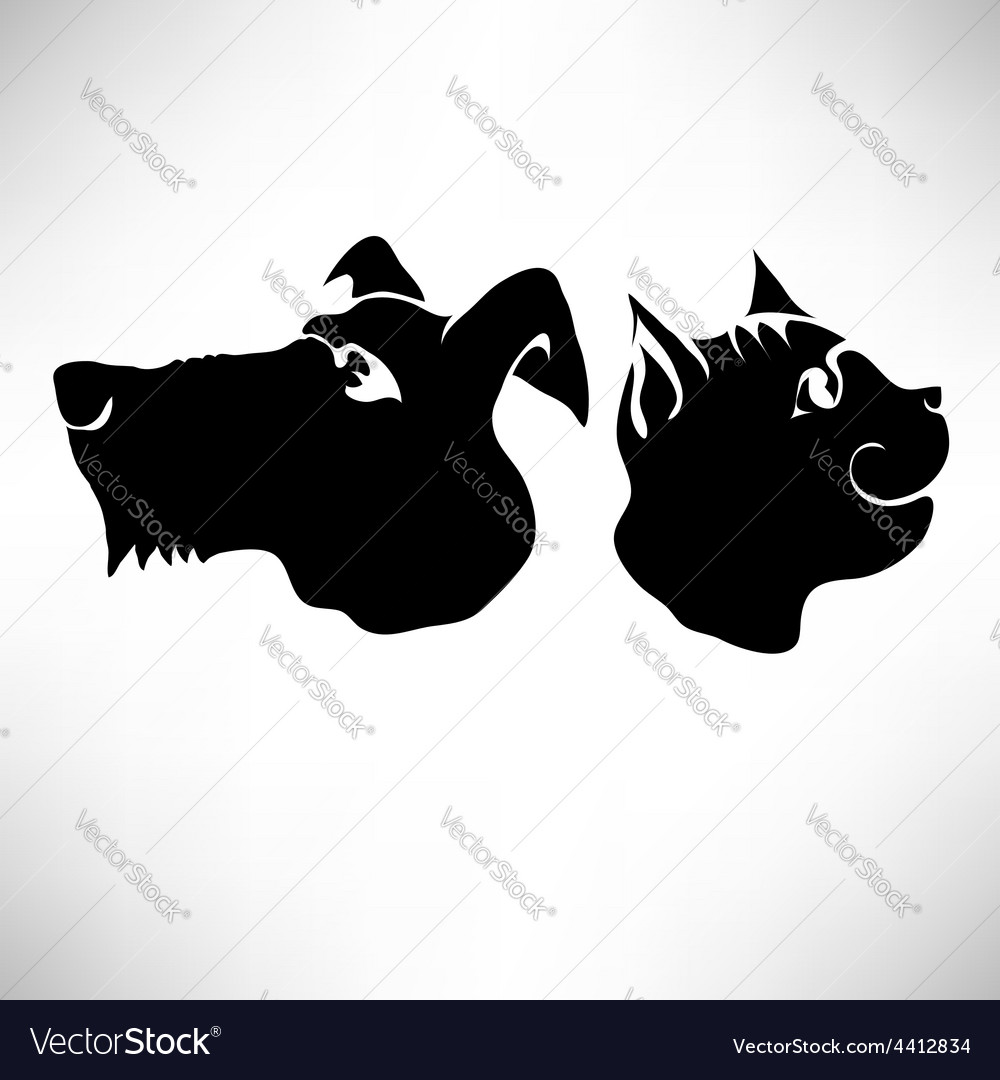 Cat and dogs heads vector