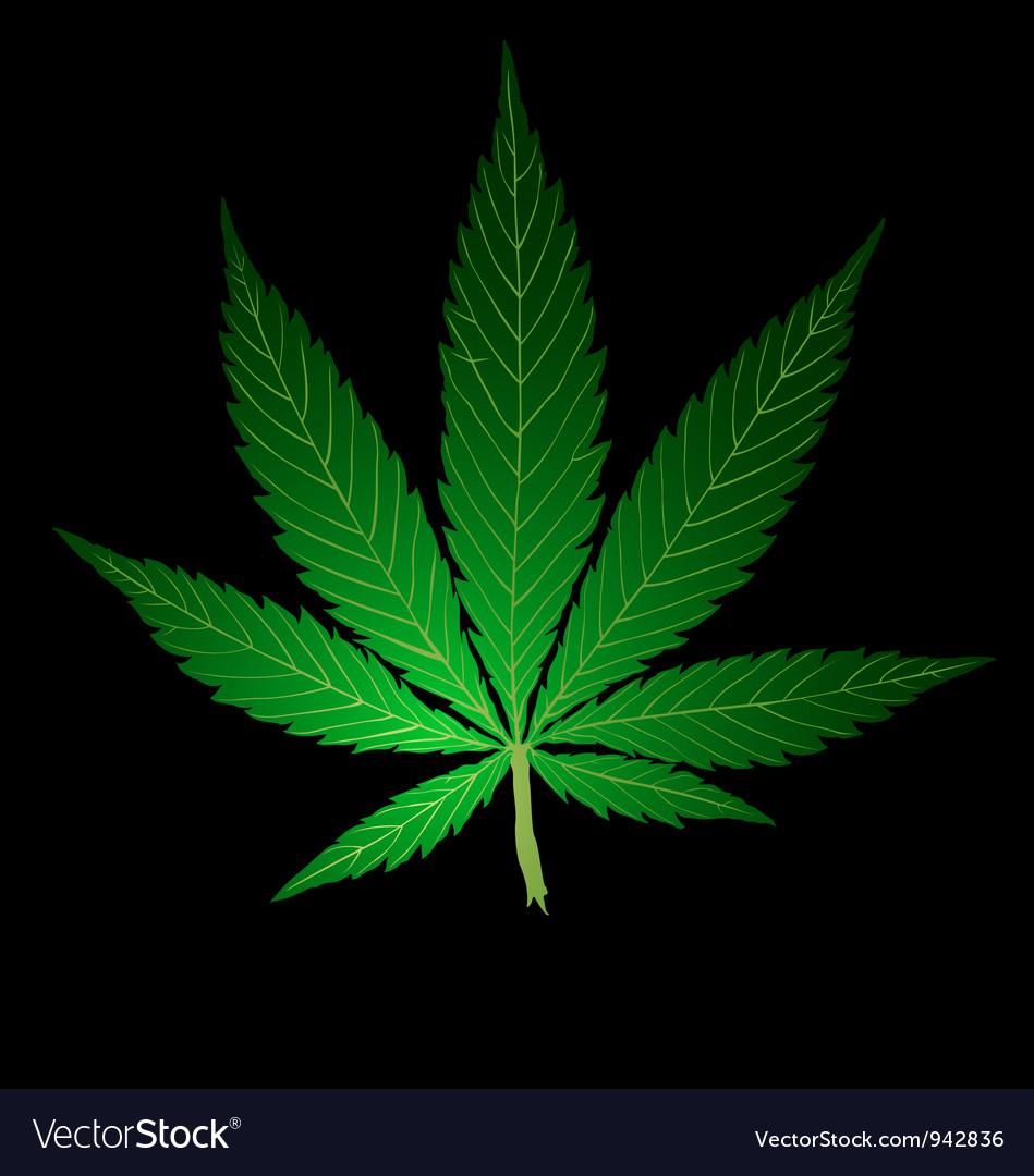 Pot leaf vector