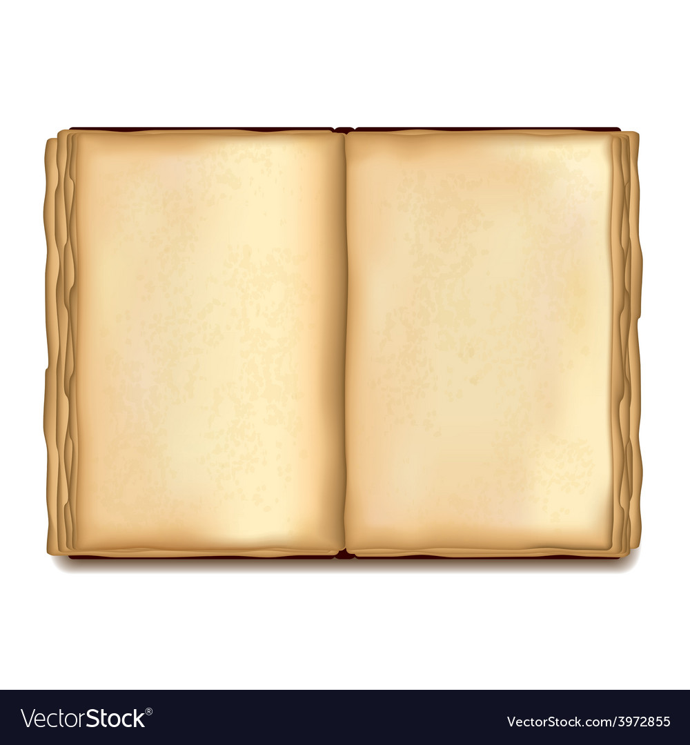 Old opened book isolated vector