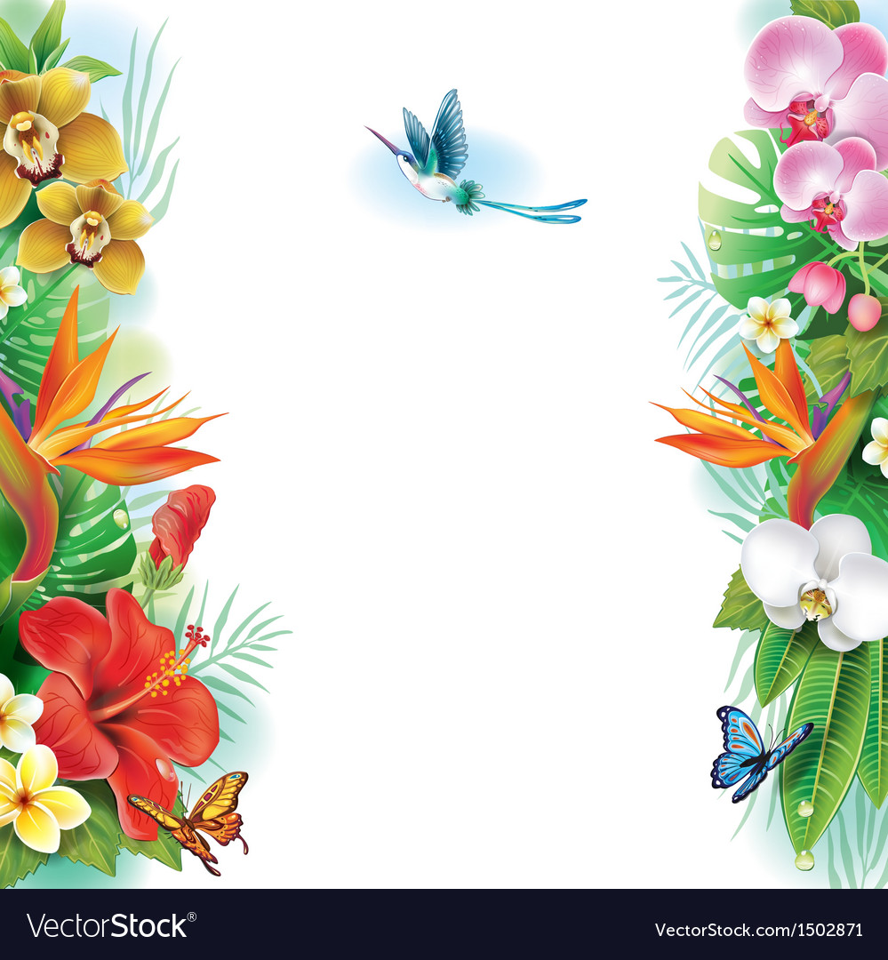 Border from tropical flowers and leaves vector