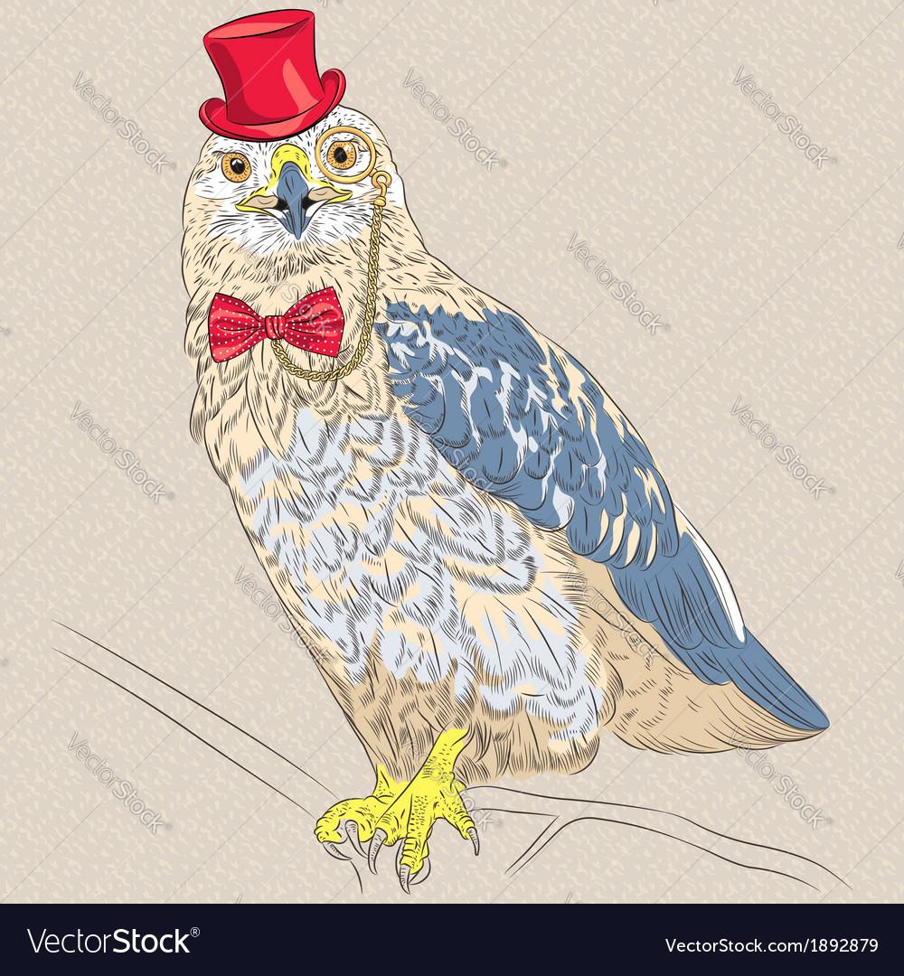 Funny cartoon hipster bird rough-legged buzzard vector