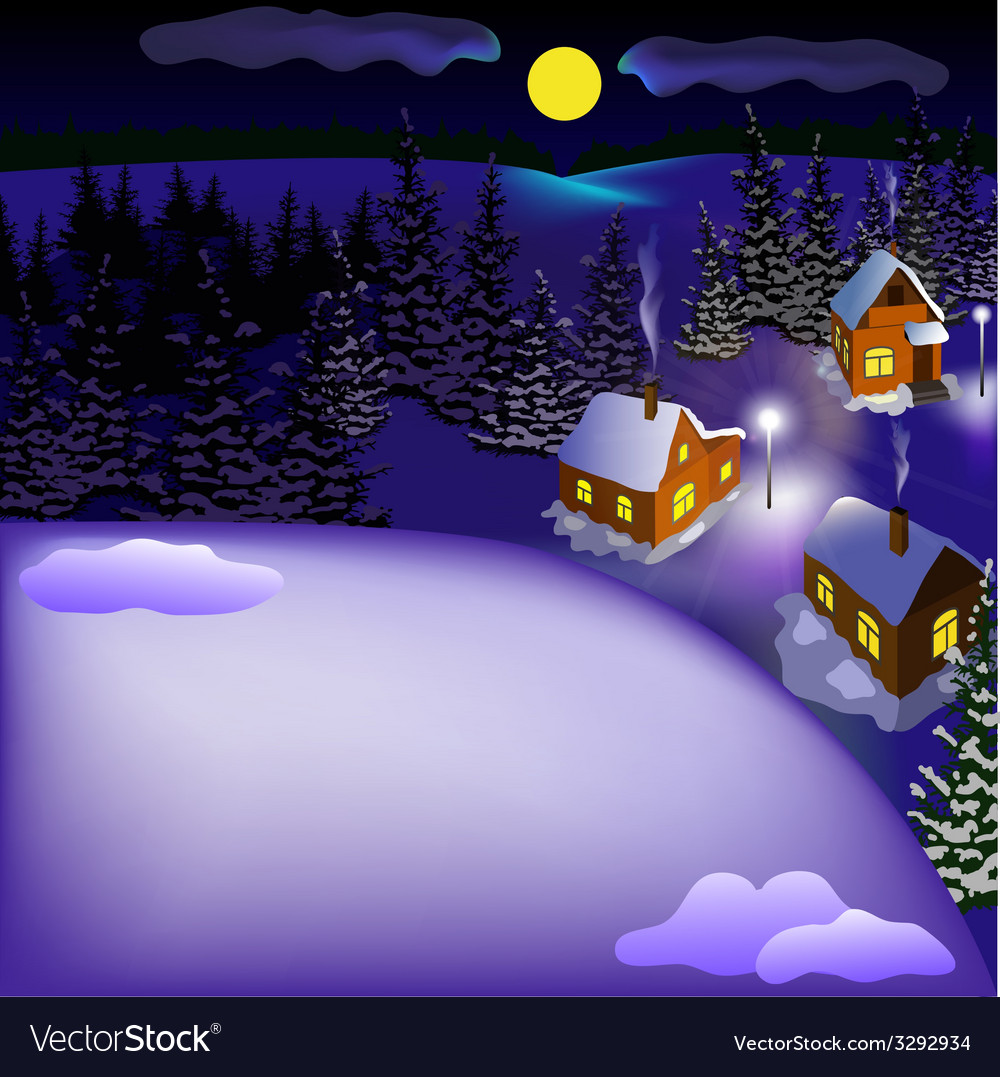 View of landscape of snowy town at the night vector