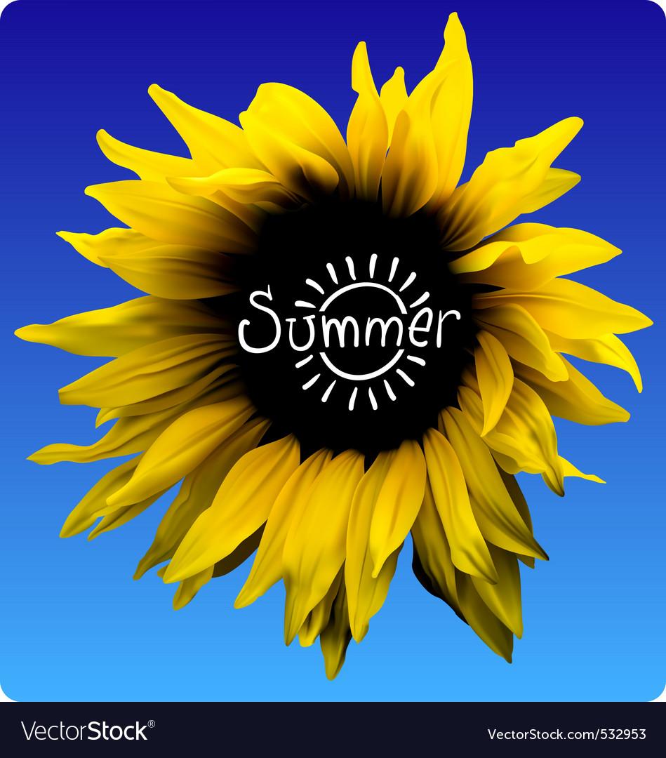 Sunflower summer concept vector