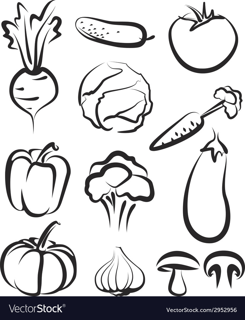 With a set of vegetables vector
