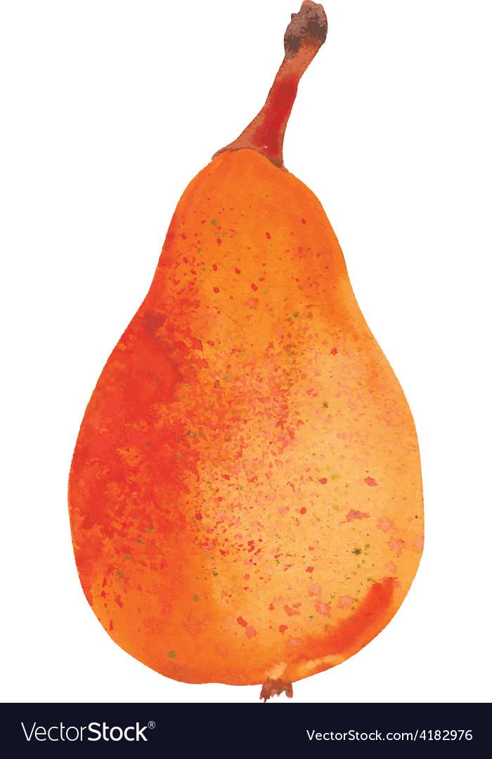 Yellow pear vector