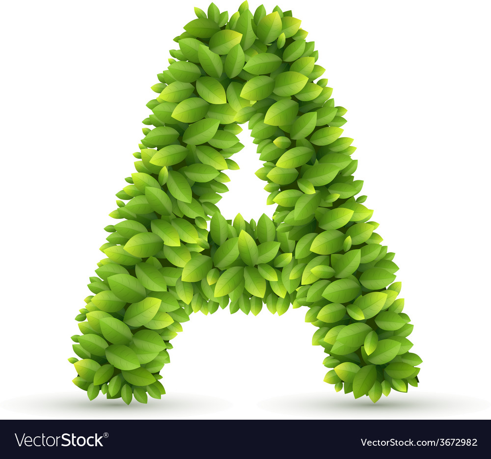Letter a alphabet of green leaves vector