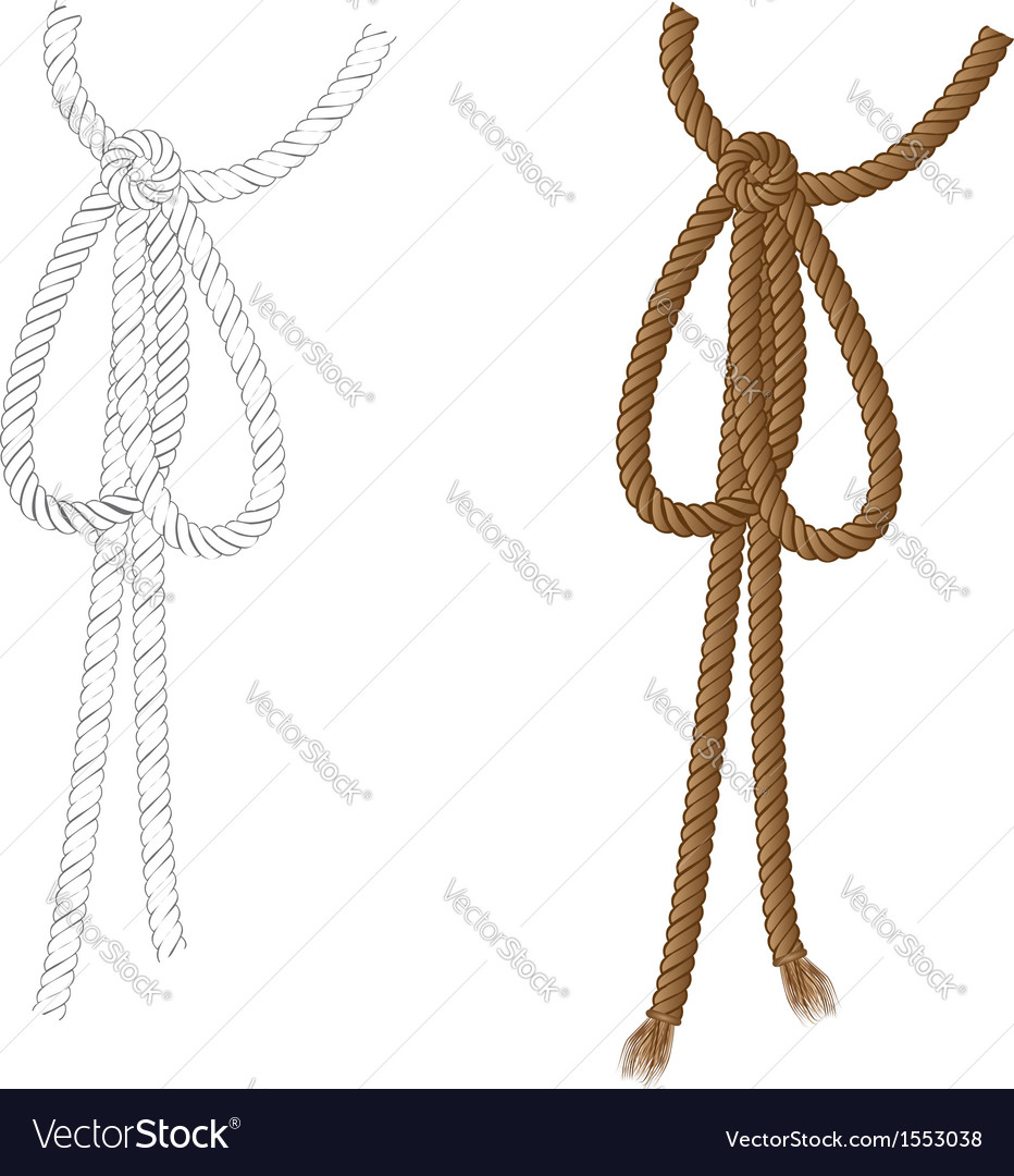 Rope bow vector