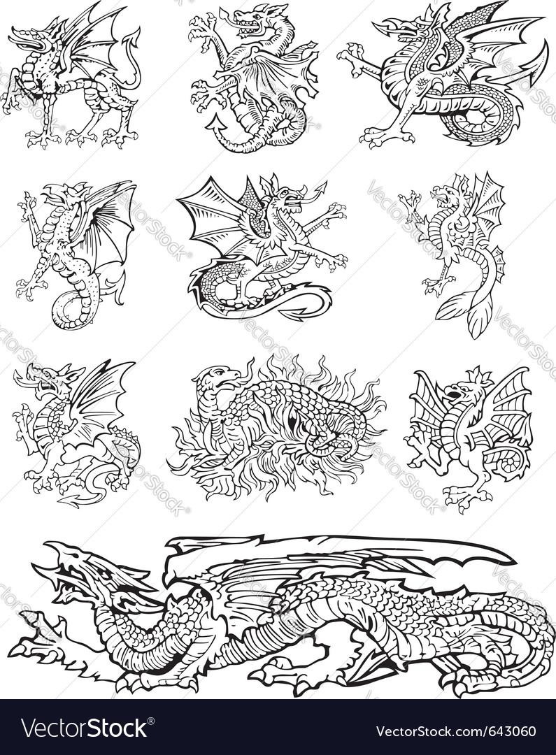 Heraldic dragons vector
