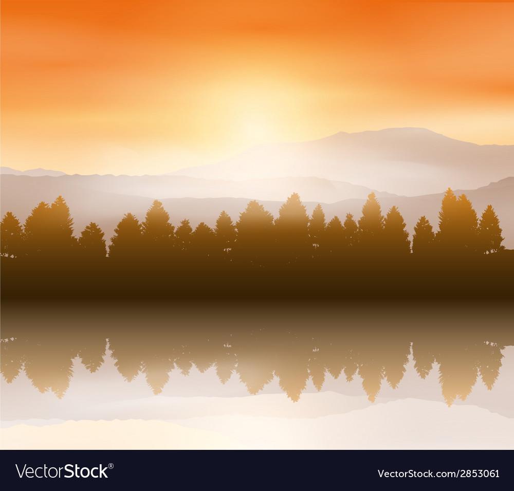 Forest landscape background vector