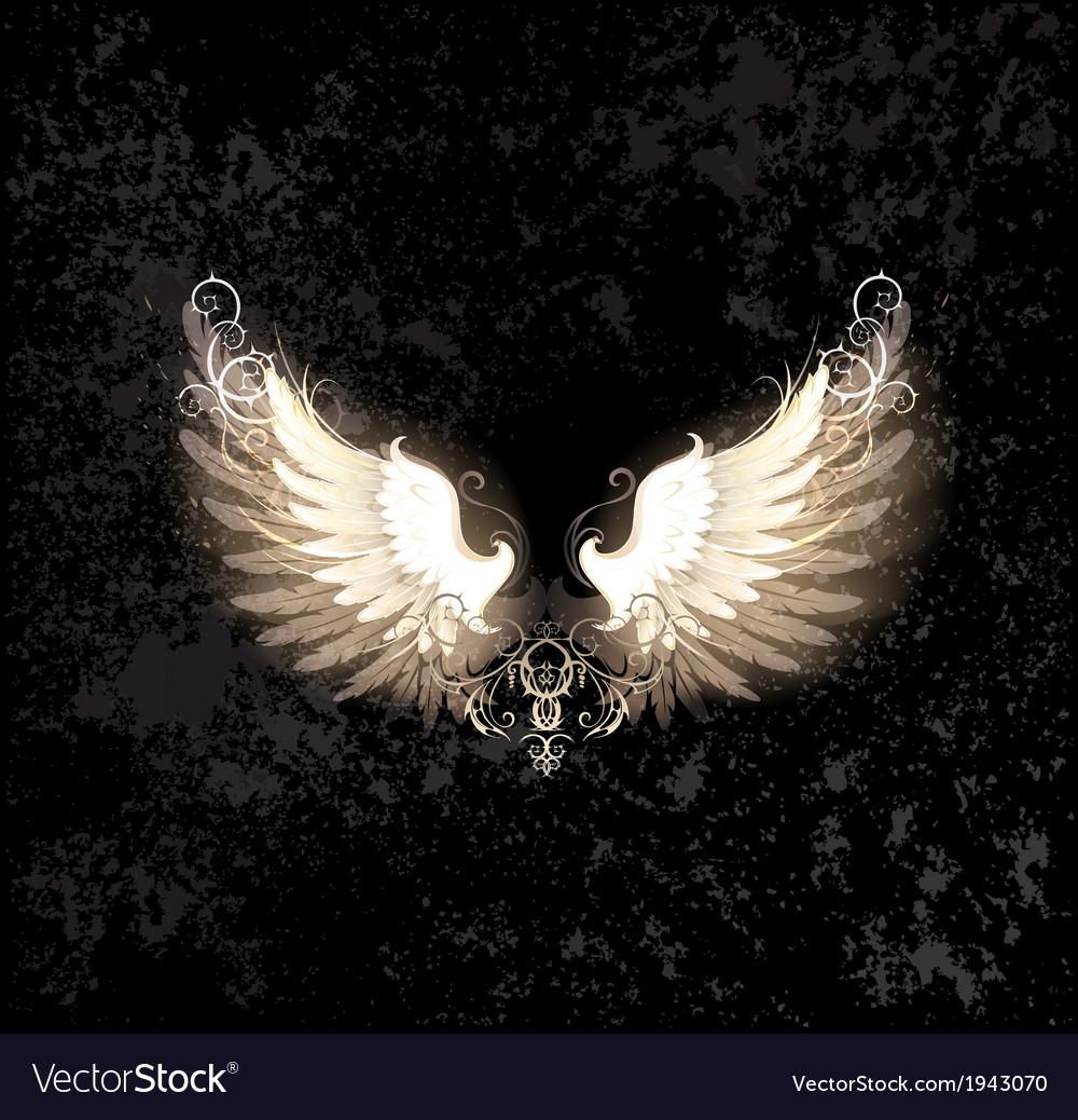 Light wings vector