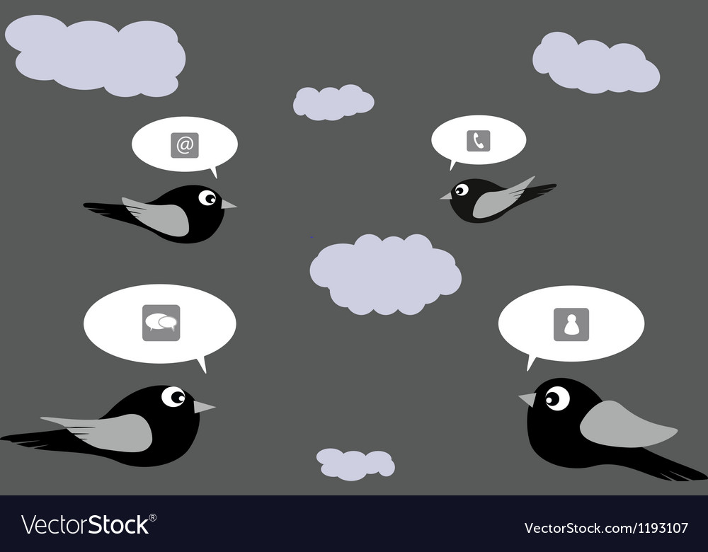 The social network birds vector