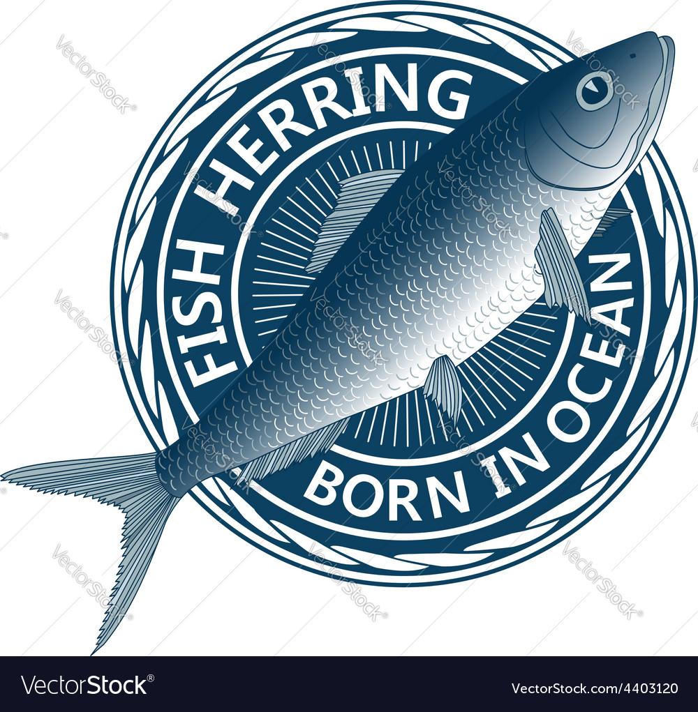 Blue fish herring vector