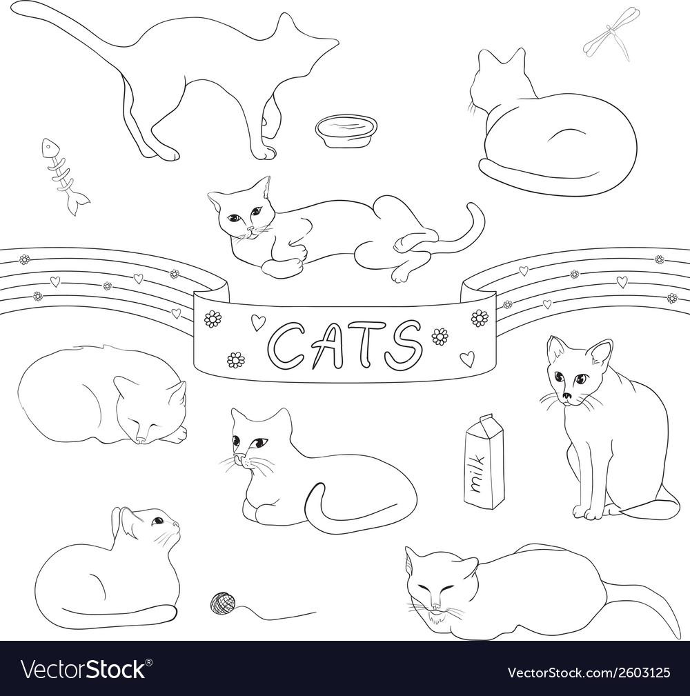 Contour cats set vector