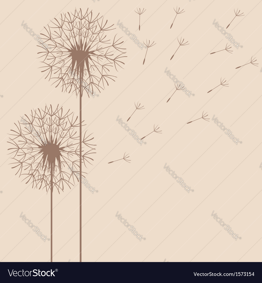 Dandelion flight vector