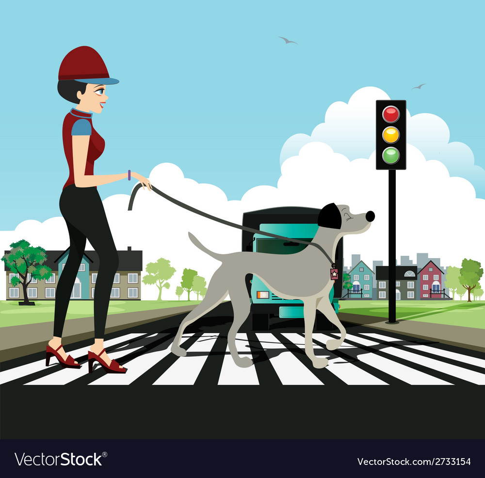 Woman walking dog vector