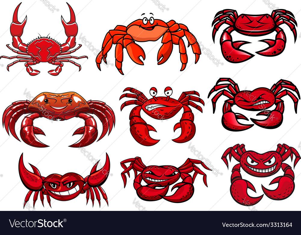 Red cartoon marine crabs set vector