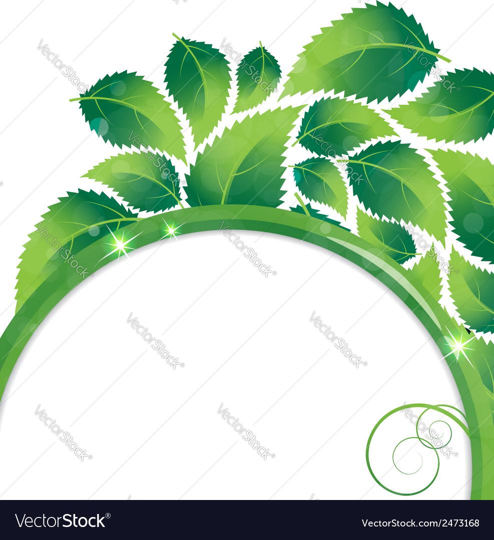Foliage environmental background vector