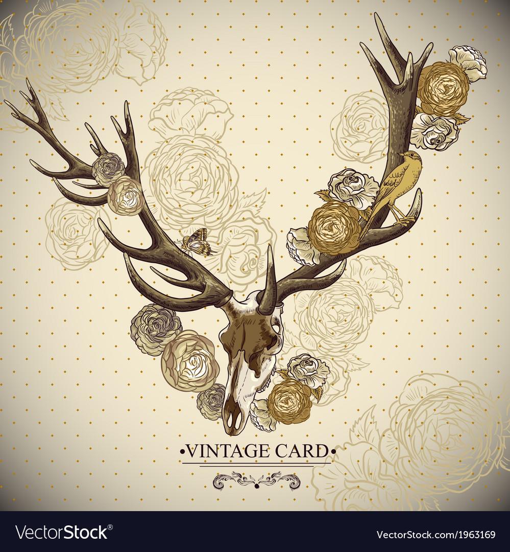 Vintage floral background with a deer skull vector