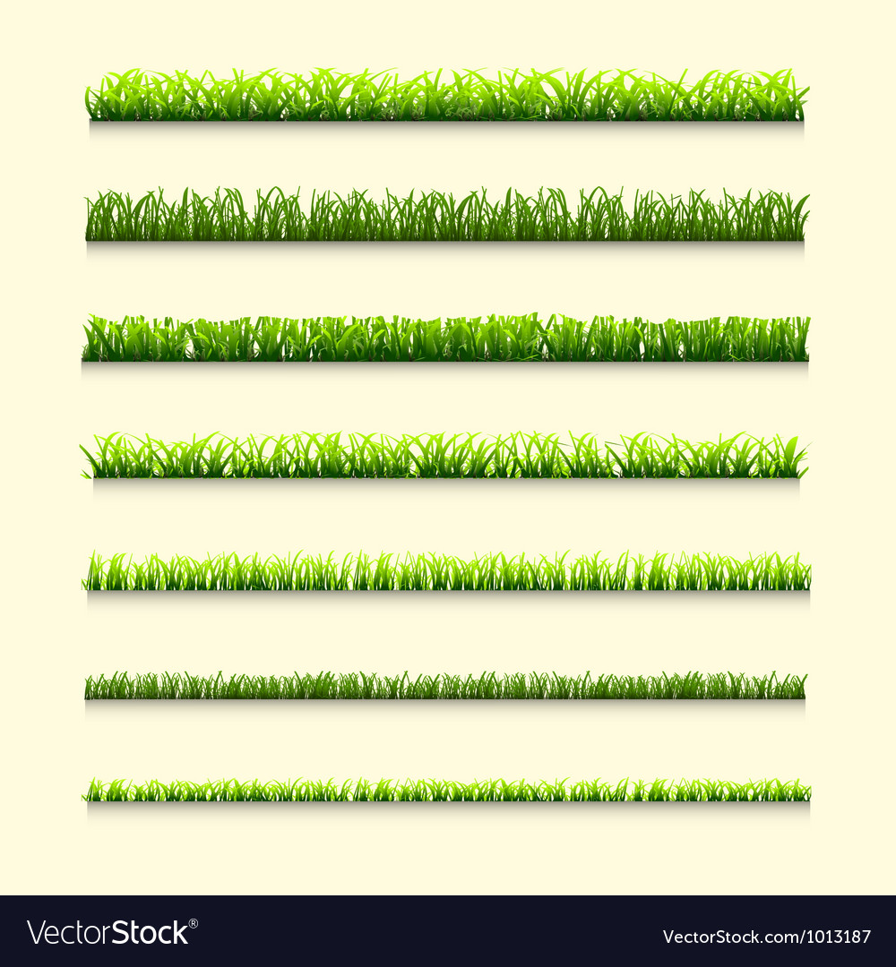 Seven different types of green grass vector