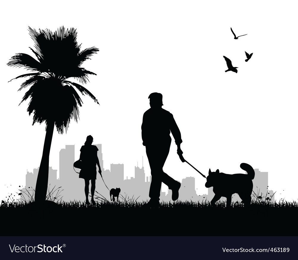 People walking dogs vector