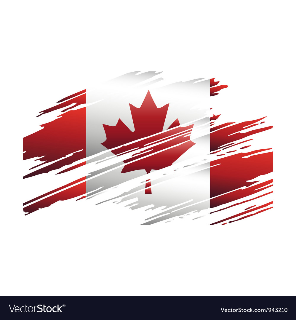 Flag canada in the form traces brush vector