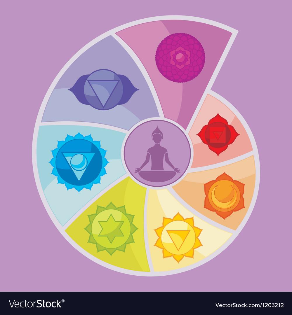The seven chakras vector