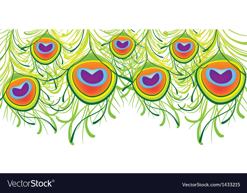 Peacock feather background vector